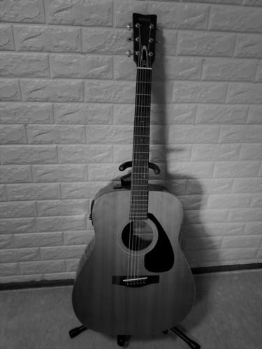 けい太ギター モノクロ.jpg