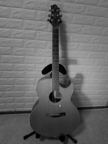こう太ギター モノクロ.jpg