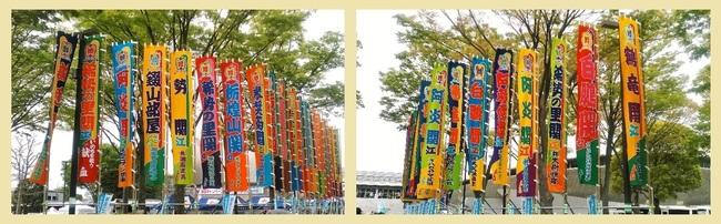 大相撲藤沢巡業20180414 のぼり01.jpg