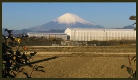 富士山 伊勢原にて20170203節分.jpg