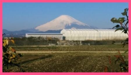富士山 伊勢原にて 20170303ひなまつり.jpg